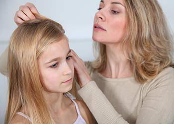 head-lice-assistance